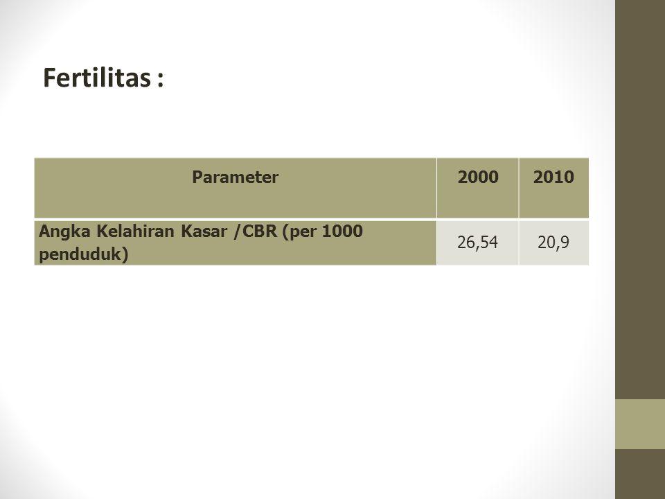 Fertilitas : Parameter 2000 2010