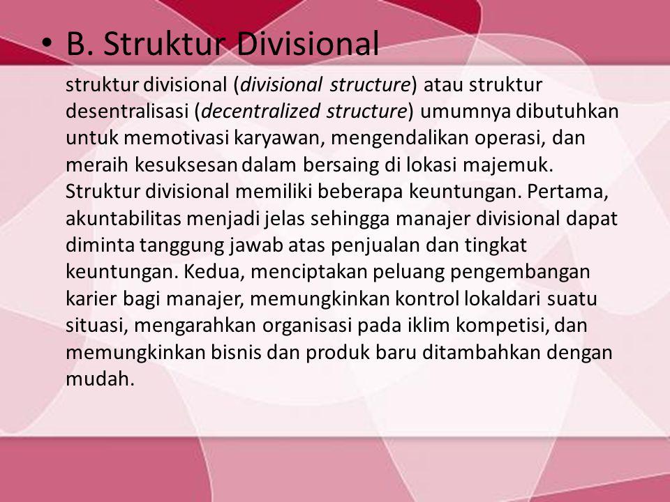 B. Struktur Divisional