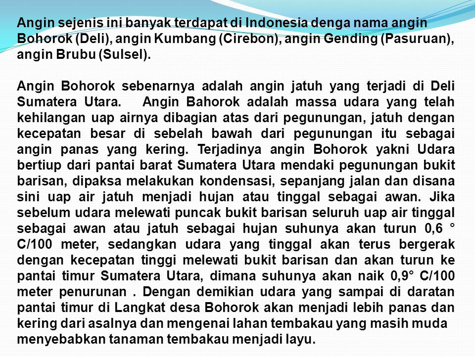 Angin sejenis ini banyak terdapat di Indonesia denga nama angin Bohorok (Deli), angin Kumbang (Cirebon), angin Gending (Pasuruan), angin Brubu (Sulsel).