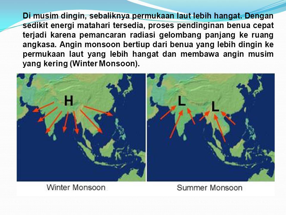 Di musim dingin, sebaliknya permukaan laut lebih hangat