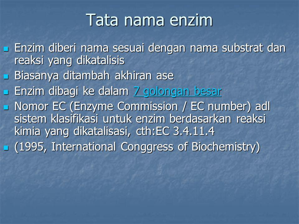Tata nama enzim Enzim diberi nama sesuai dengan nama substrat dan reaksi yang dikatalisis. Biasanya ditambah akhiran ase.