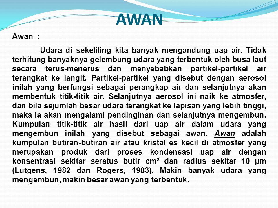 AWAN Awan :