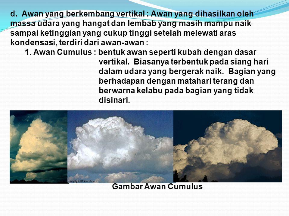 d. Awan yang berkembang vertikal : Awan yang dihasilkan oleh massa udara yang hangat dan lembab yang masih mampu naik sampai ketinggian yang cukup tinggi setelah melewati aras kondensasi, terdiri dari awan-awan :