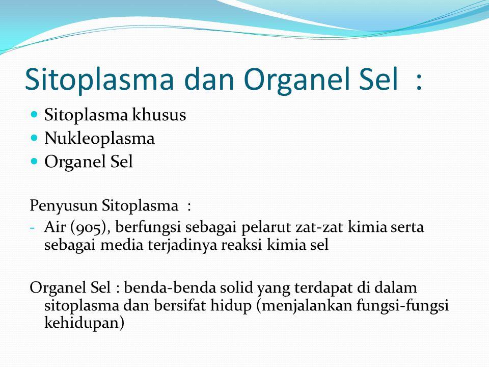Sitoplasma dan Organel Sel :