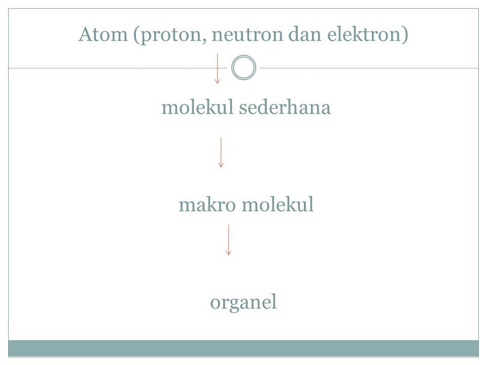 Atom (proton, neutron dan elektron) molekul sederhana makro molekul
