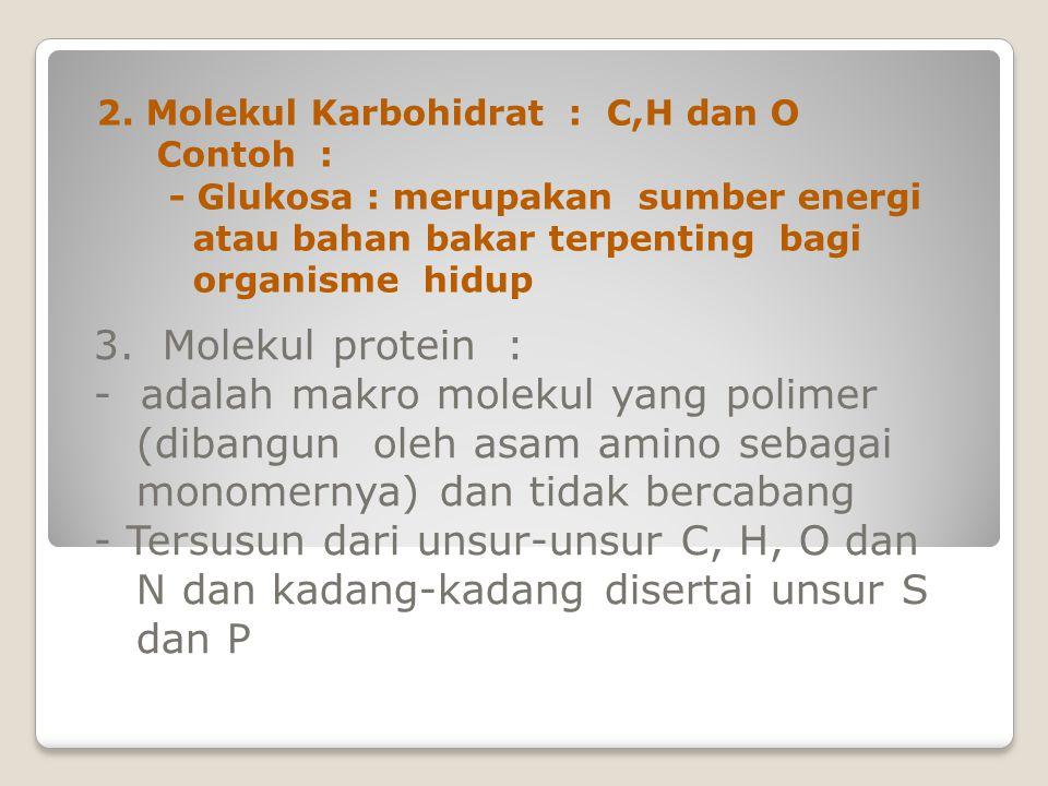 2. Molekul Karbohidrat : C,H dan O