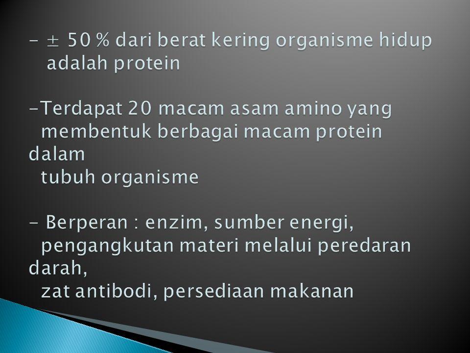 - ± 50 % dari berat kering organisme hidup adalah protein -Terdapat 20 macam asam amino yang membentuk berbagai macam protein dalam tubuh organisme - Berperan : enzim, sumber energi, pengangkutan materi melalui peredaran darah, zat antibodi, persediaan makanan