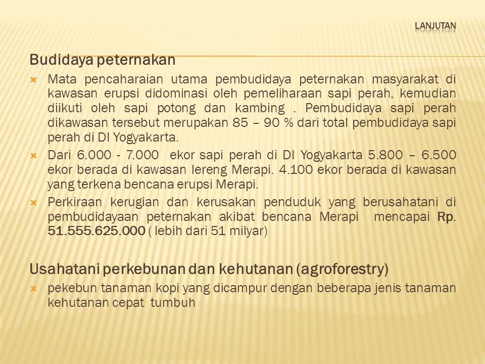 Usahatani perkebunan dan kehutanan (agroforestry)