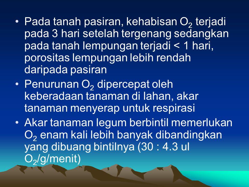 Pada tanah pasiran, kehabisan O2 terjadi pada 3 hari setelah tergenang sedangkan pada tanah lempungan terjadi < 1 hari, porositas lempungan lebih rendah daripada pasiran