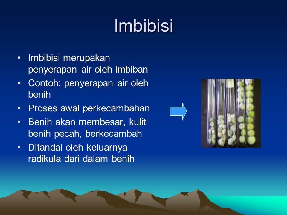 Imbibisi Imbibisi merupakan penyerapan air oleh imbiban