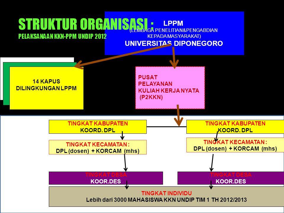 STRUKTUR ORGANISASI : PELAKSANAAN KKN-PPM UNDIP 2012