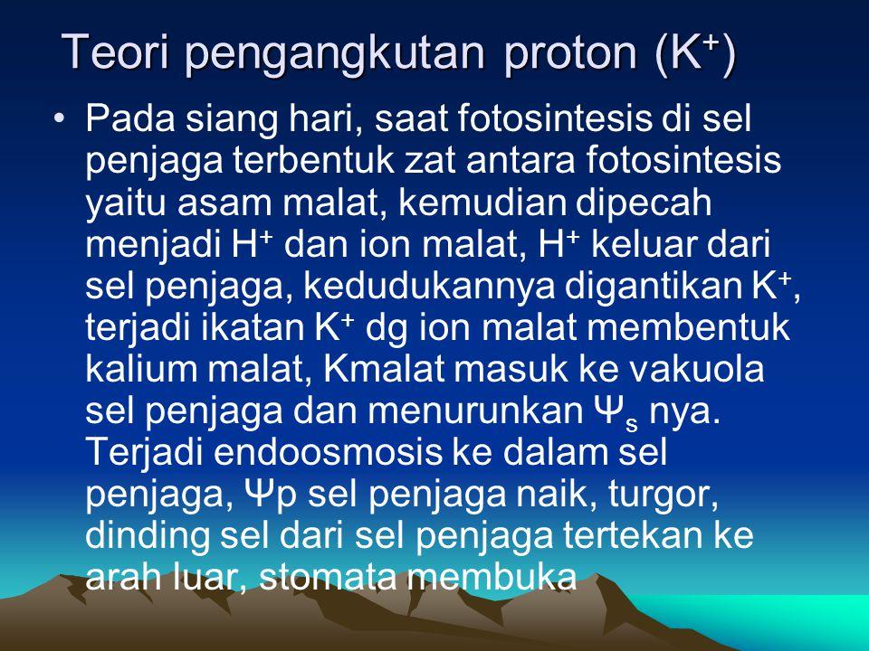 Teori pengangkutan proton (K+)