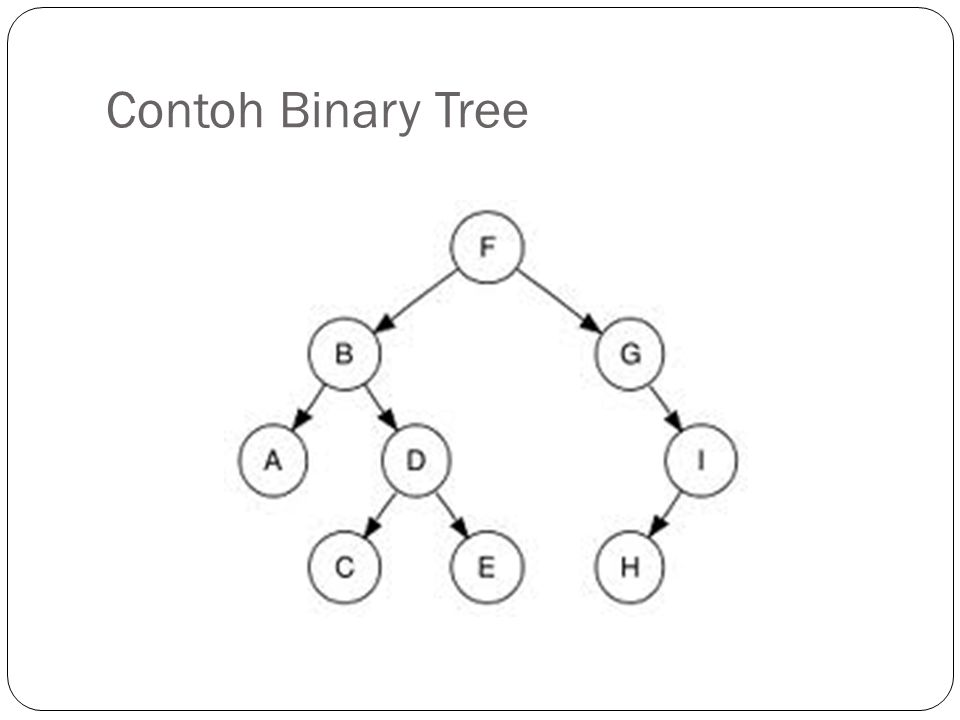 Contoh Binary Tree