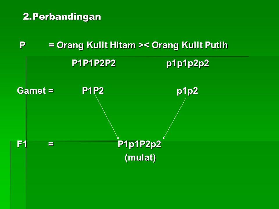 P1P1P2P2 p1p1p2p2 2.Perbandingan