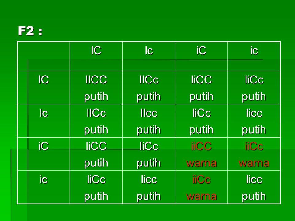 F2 : IC Ic iC ic IICC putih IICc IiCC IiCc IIcc Iicc iiCC warna iiCc