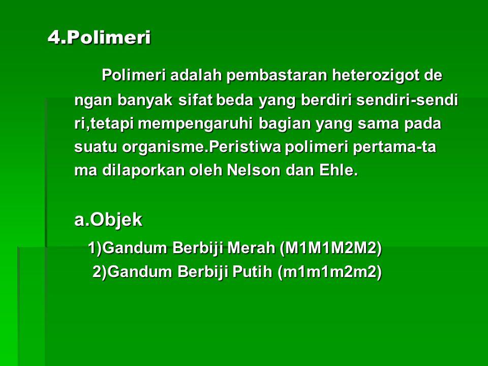 4.Polimeri Polimeri adalah pembastaran heterozigot de
