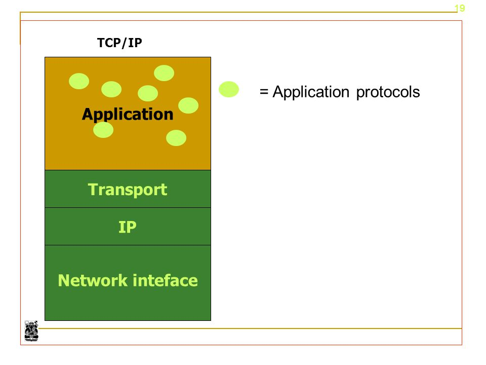 Network inteface Application Transport IP