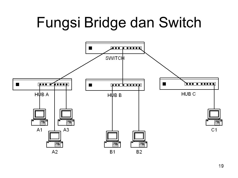 Fungsi Bridge dan Switch