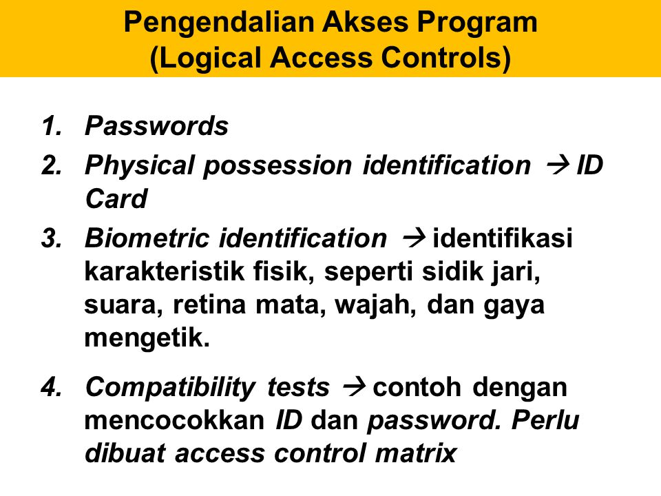 Pengendalian Akses Program (Logical Access Controls)