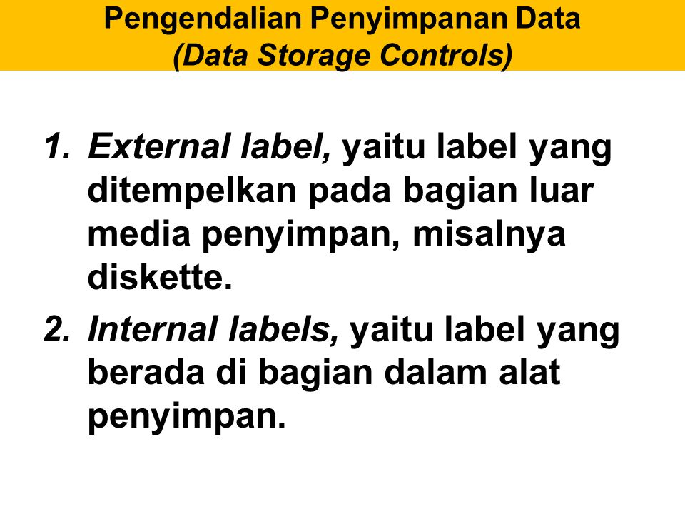 Pengendalian Penyimpanan Data (Data Storage Controls)