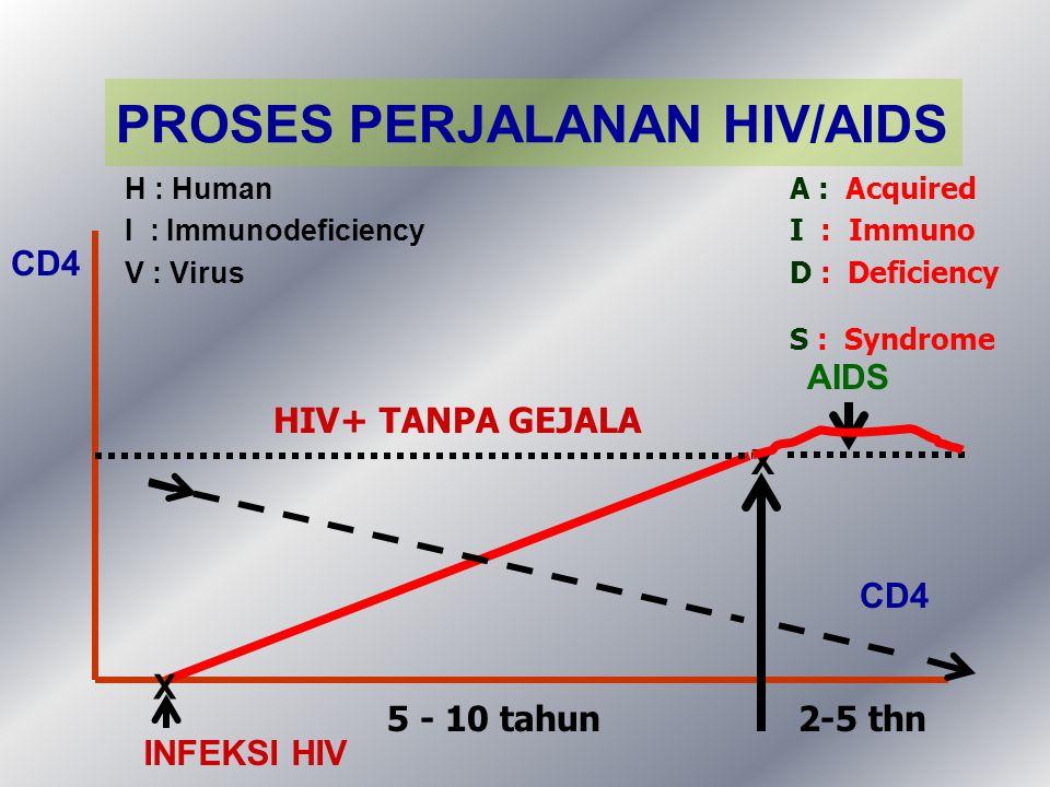 PROSES PERJALANAN HIV/AIDS