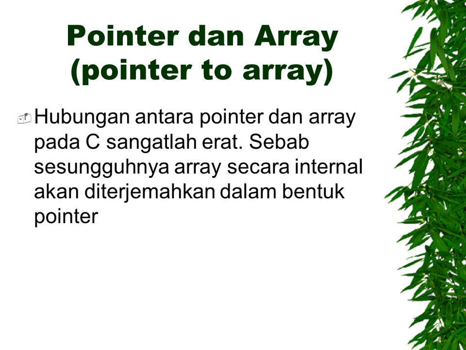 Pointer dan Array (pointer to array)