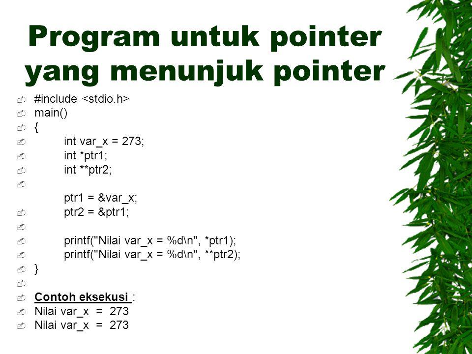 Program untuk pointer yang menunjuk pointer