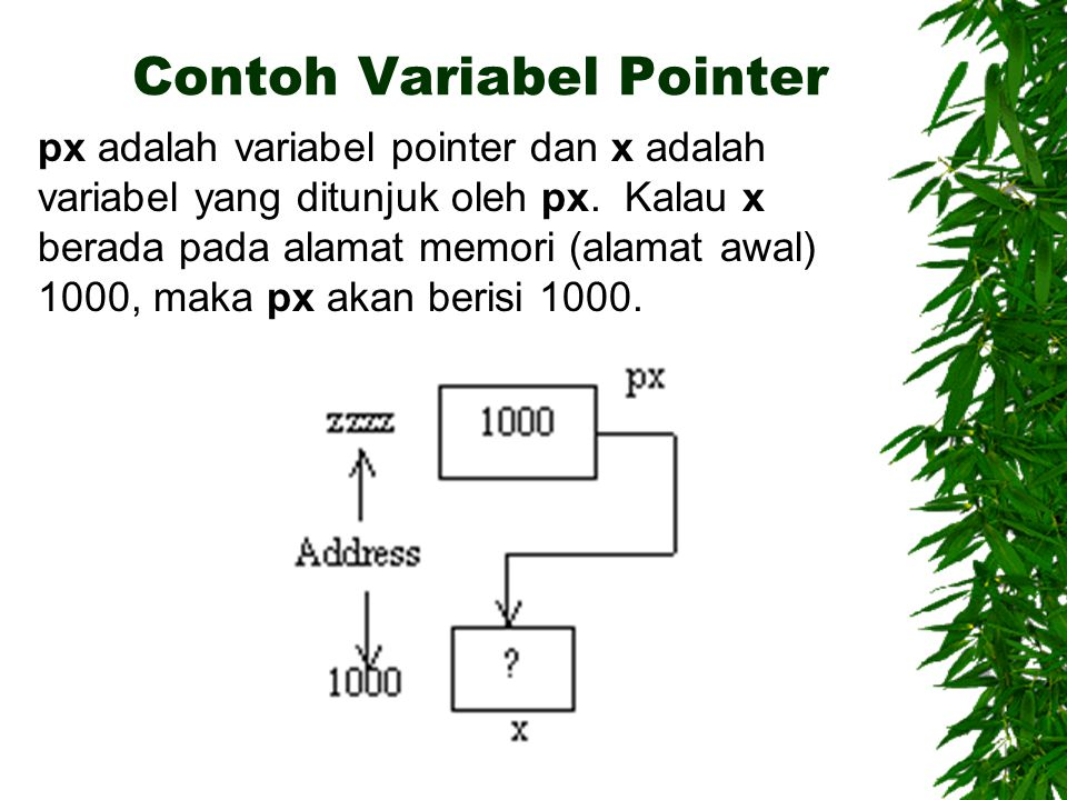 Contoh Variabel Pointer