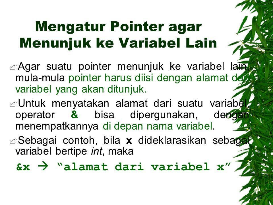 Mengatur Pointer agar Menunjuk ke Variabel Lain