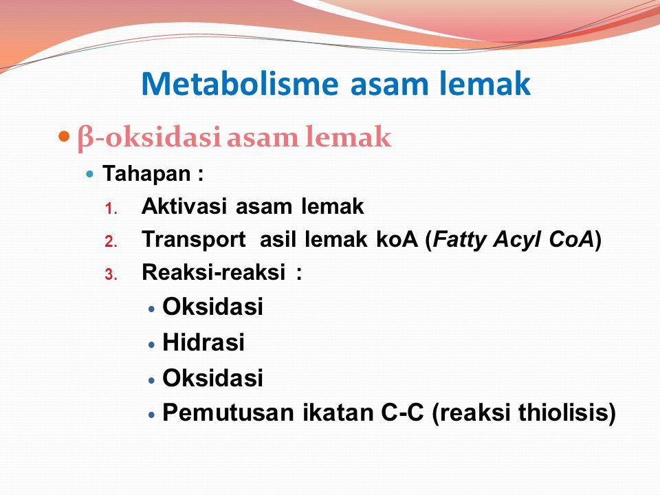 Metabolisme asam lemak