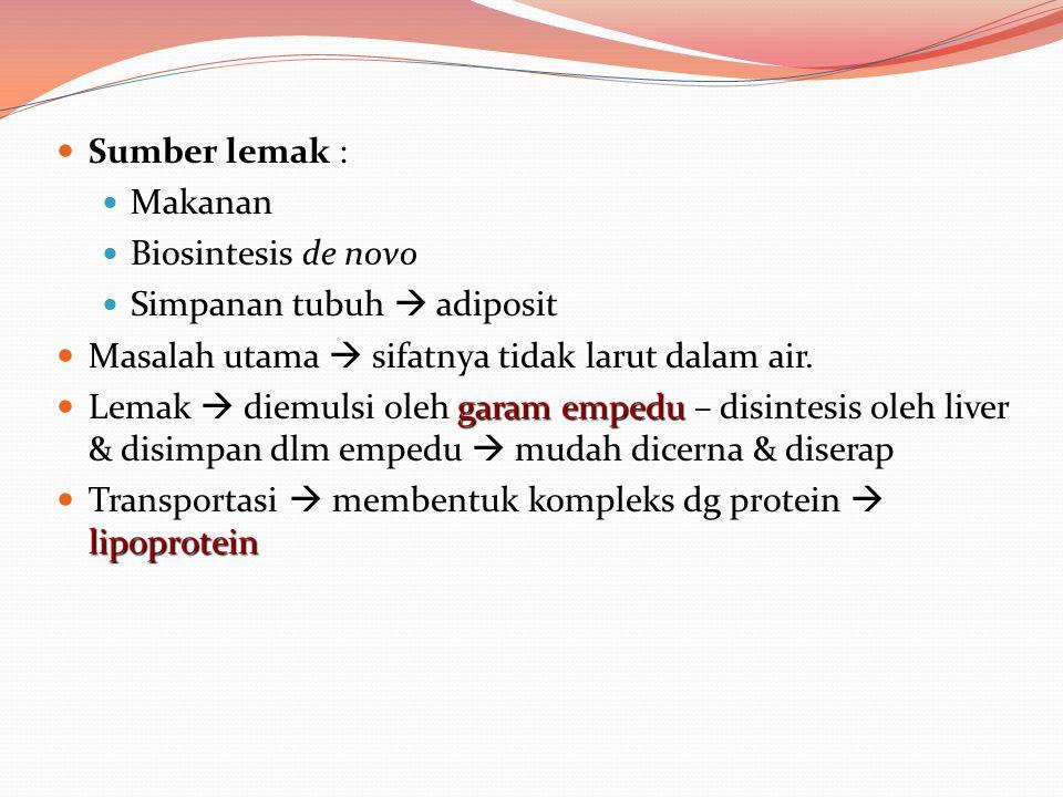 Sumber lemak : Makanan. Biosintesis de novo. Simpanan tubuh  adiposit. Masalah utama  sifatnya tidak larut dalam air.