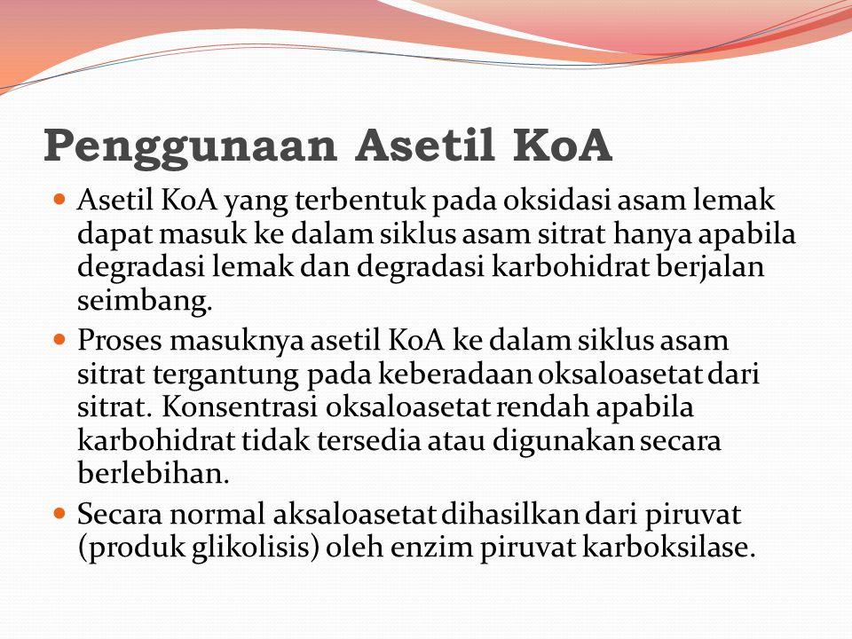 Penggunaan Asetil KoA