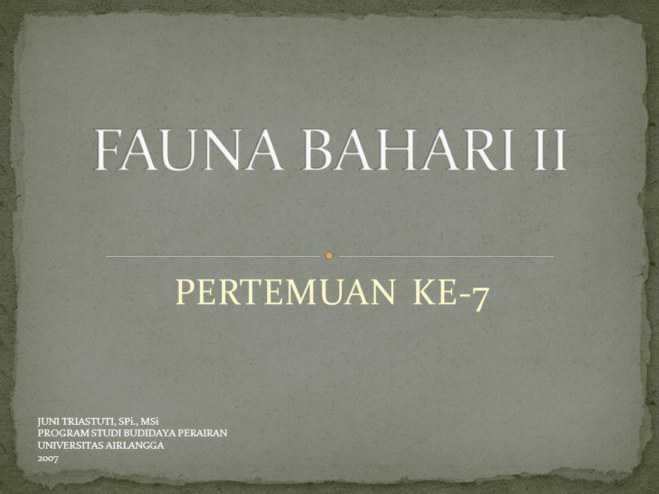 FAUNA BAHARI II PERTEMUAN KE-7 JUNI TRIASTUTI, SPi., MSi