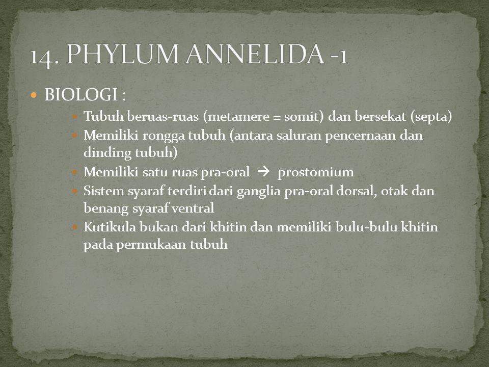14. PHYLUM ANNELIDA -1 BIOLOGI :