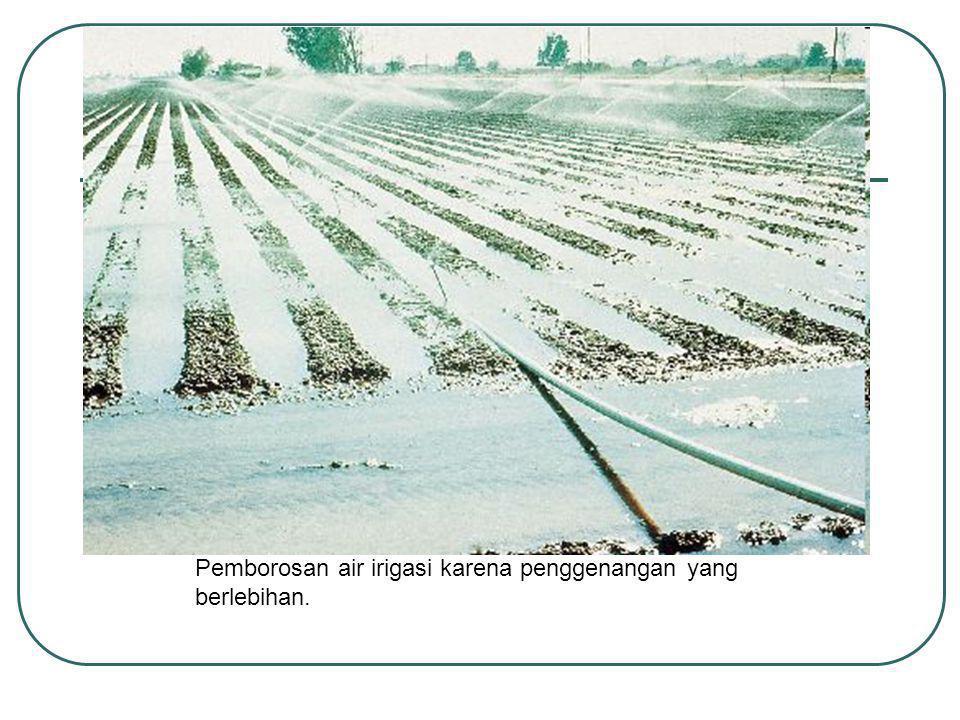 Pemborosan air irigasi karena penggenangan yang berlebihan.