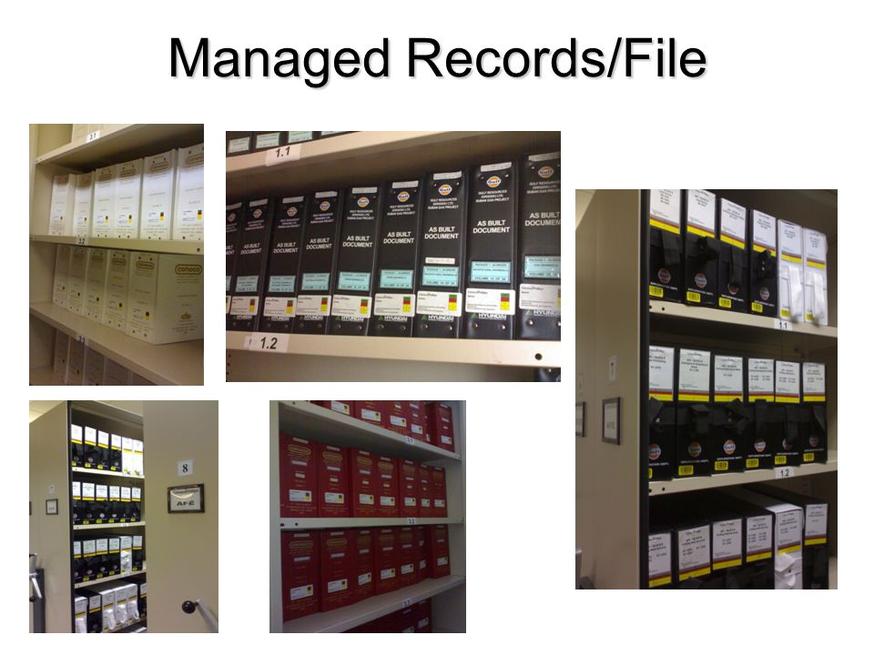 Managed Records/File