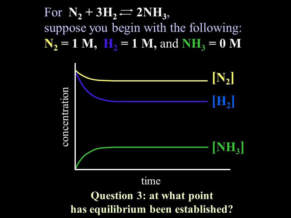 Question 3: at what point has equilibrium been established