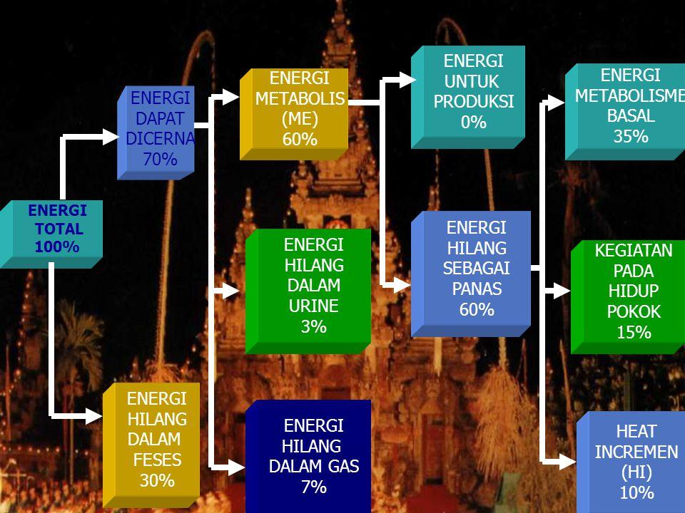 ENERGI UNTUK PRODUKSI 0% ENERGI METABOLISME BASAL 35% ENERGI METABOLIS