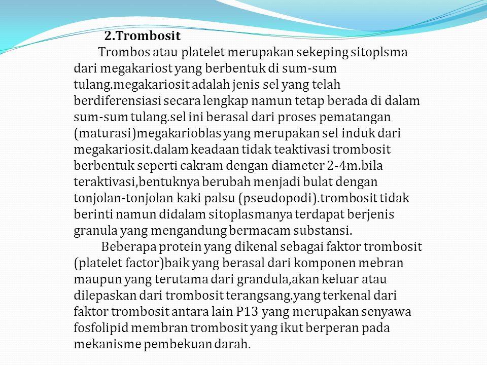 2.Trombosit