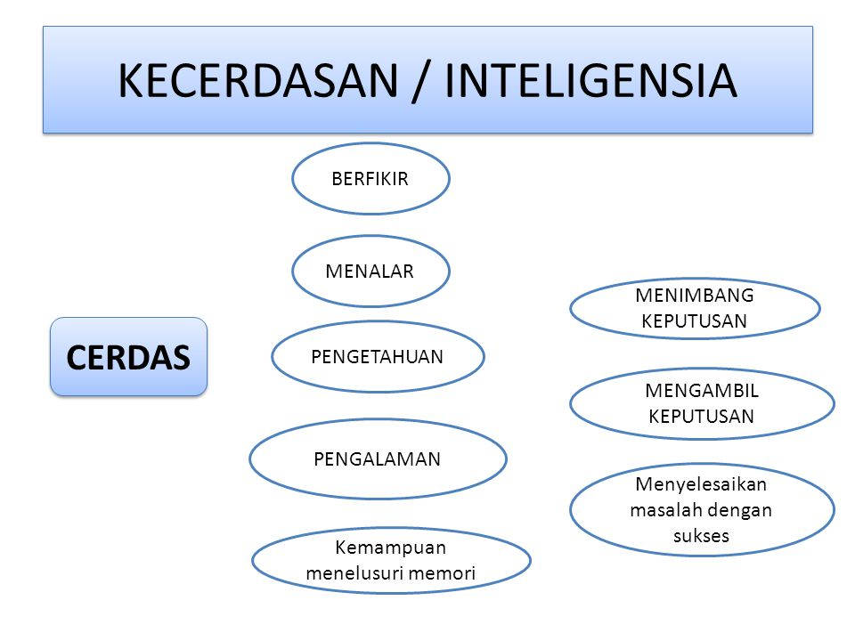 KECERDASAN / INTELIGENSIA