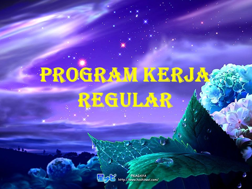 PROGRAM KERJA REGULAR