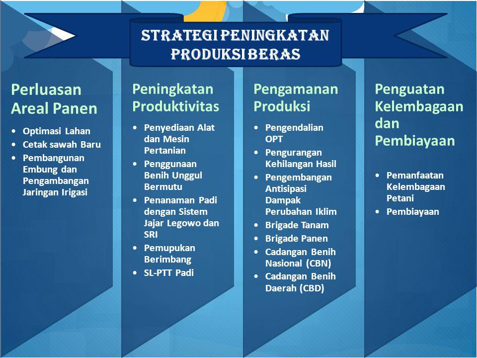 Strategi Peningkatan Produksi Beras