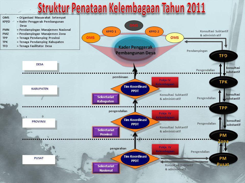 Struktur Penataan Kelembagaan Tahun 2011