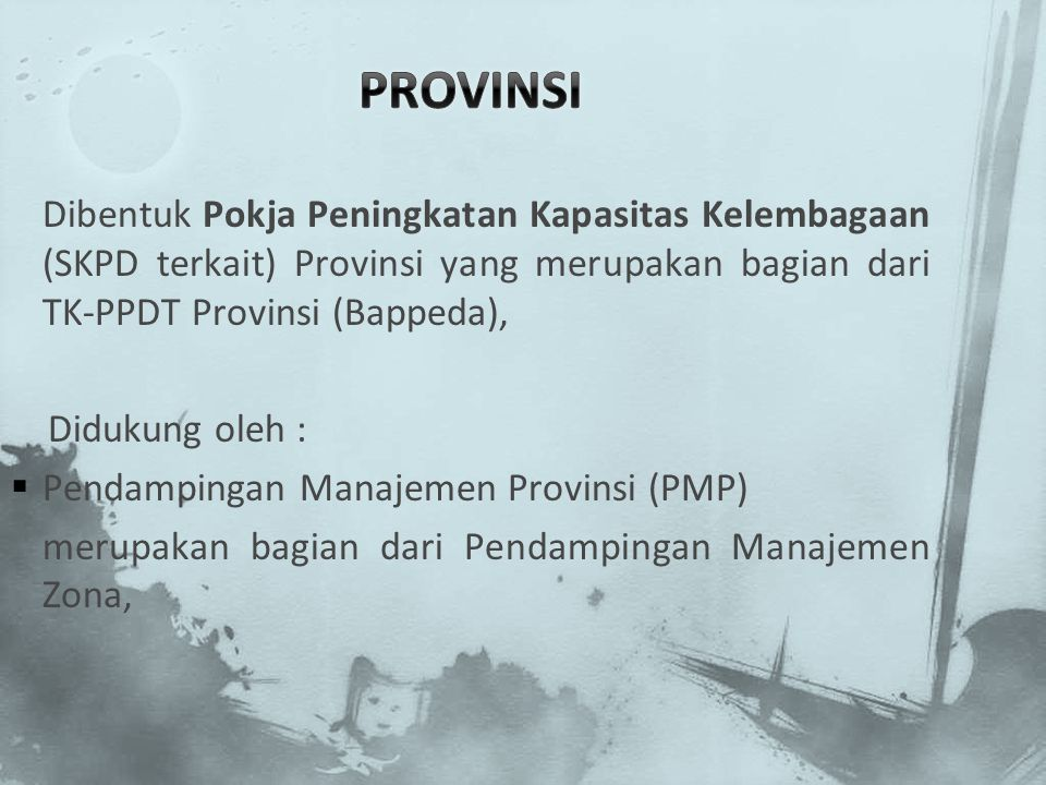 PROVINSI Dibentuk Pokja Peningkatan Kapasitas Kelembagaan (SKPD terkait) Provinsi yang merupakan bagian dari TK-PPDT Provinsi (Bappeda),