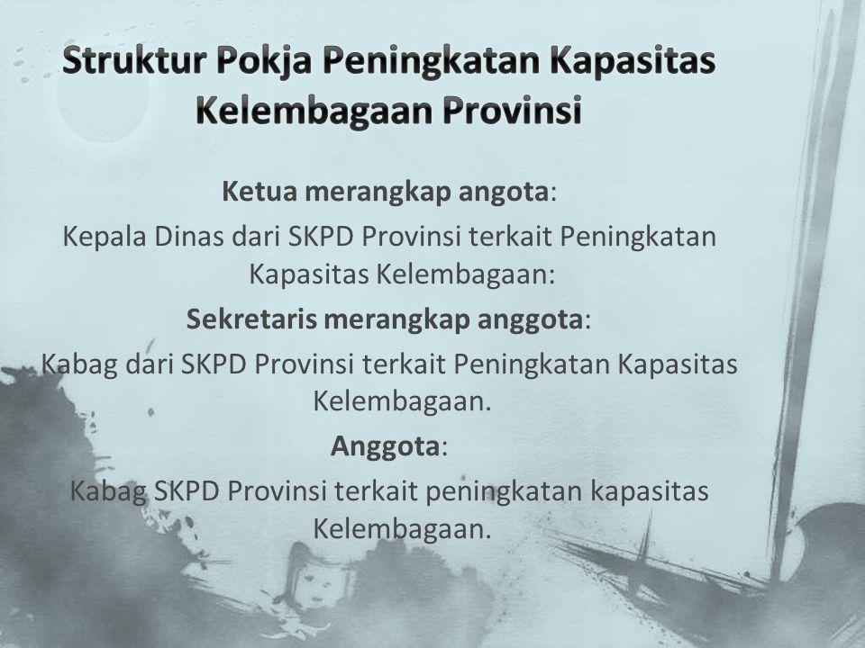 Struktur Pokja Peningkatan Kapasitas Kelembagaan Provinsi