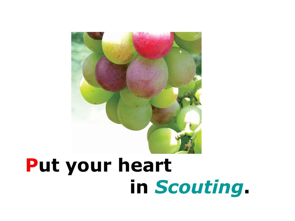 Put your heart in Scouting.