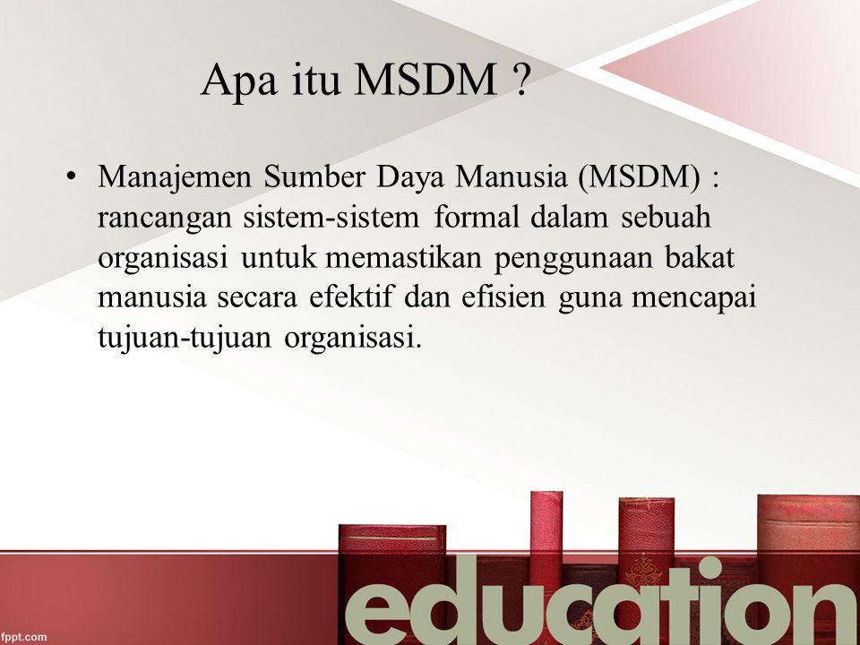 Apa itu MSDM