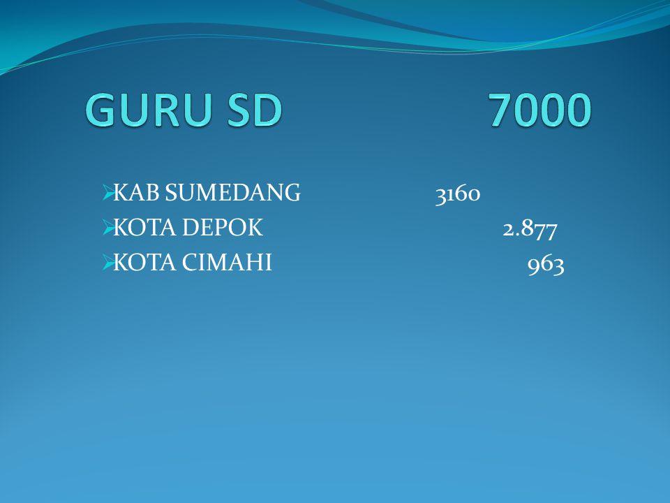 KAB SUMEDANG 3160 KOTA DEPOK 2.877 KOTA CIMAHI 963