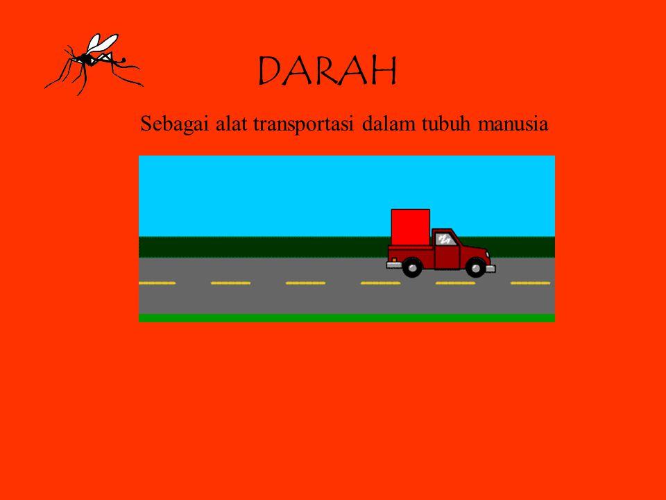 DARAH Sebagai alat transportasi dalam tubuh manusia