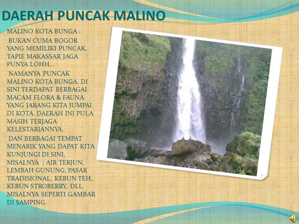DAERAH PUNCAK MALINO MALINO KOTA BUNGA :